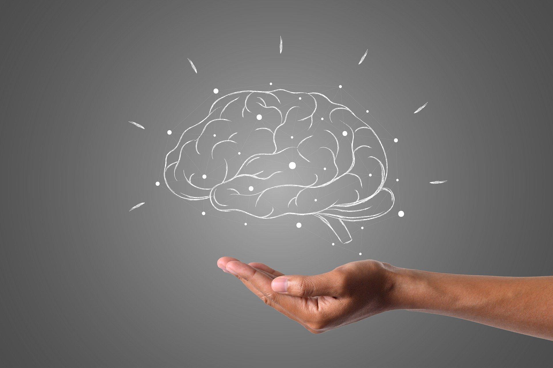 salud mental nano-nutrition